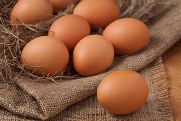 Dozen of chicken eggs