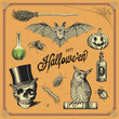 hand-drawn Halloween design elements
