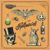 hand-drawn Halloween design elements
