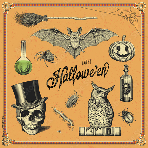 hand-drawn Halloween design elements - 72271359