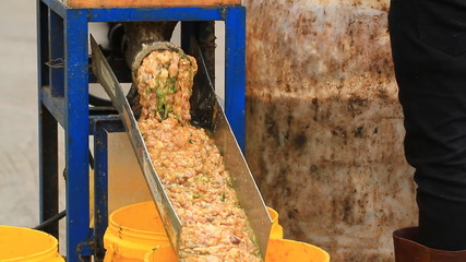 chicken intestine is grinding by meat grinder