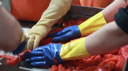 cutting  fresh  fish