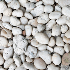white Conglomerate Stone