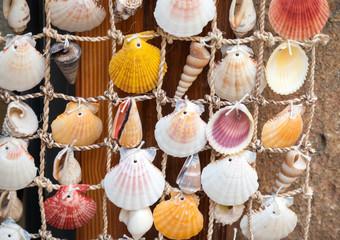 Colorful shells on net, marine decoration