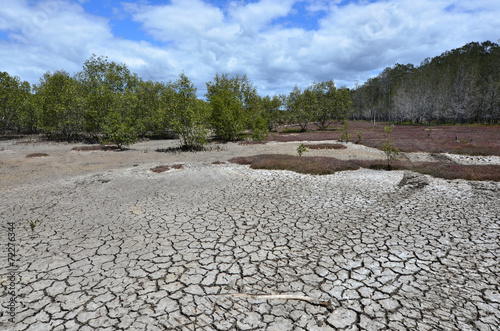 Landscape of dry earth - 72276344