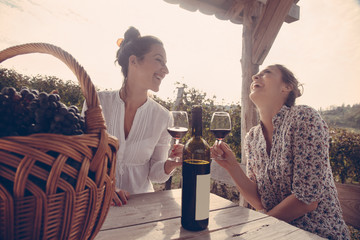 Two Cheerful Female Drinking Wine