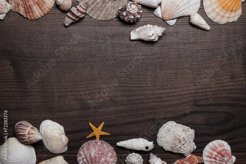 canvas print picture different seashells over brown wooden background