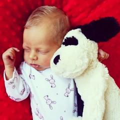 Blond baby hug cuddly dog