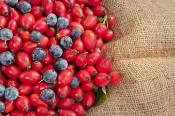 dog rose hips&black thorn berries on jute - DSC1623