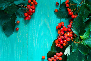 Autumn wooden background with hawthorn berries