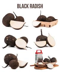 black radish isolated