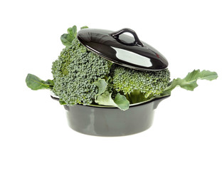 Fresh broccoli in a porcelain vessel in closeup isolated