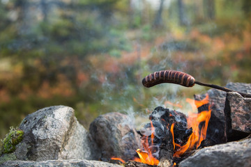 Camping in the wild - Grilled sausage above the campfire
