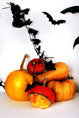 Halloween composition on floor on wall background