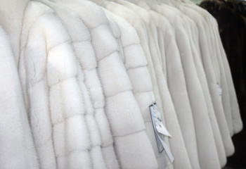 Row of fur coats
