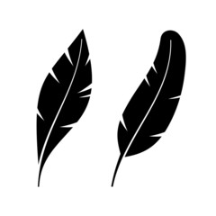 Two Icon Style Feathers.
