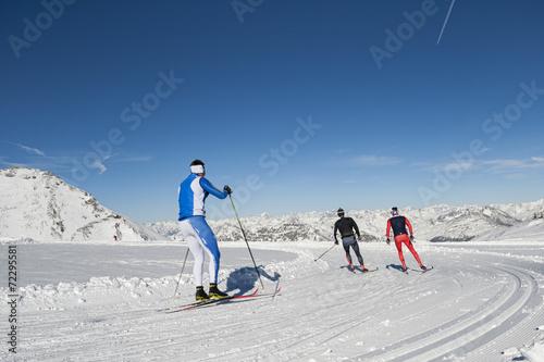 Deurstickers Alpen Sci nordico