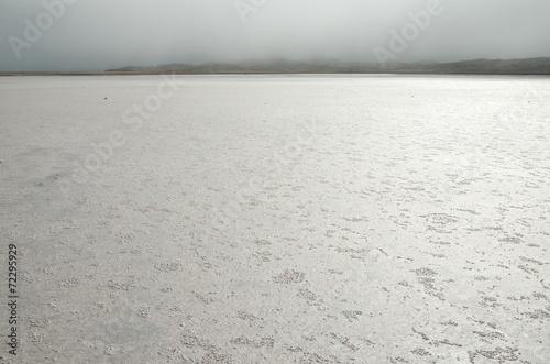 Nebelstimmung in der Salzpfanne der Lüderitz-Halbinsel - 72295929
