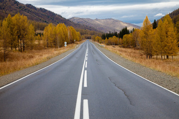 road among the Altai Mountains. autumn