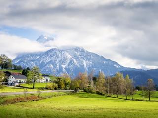 Mountain Sauling