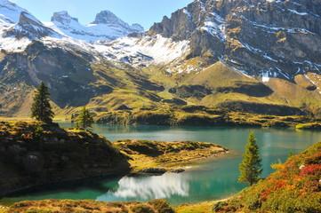 amazing mountain river
