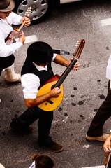 Typical Romeria Fiesta Party
