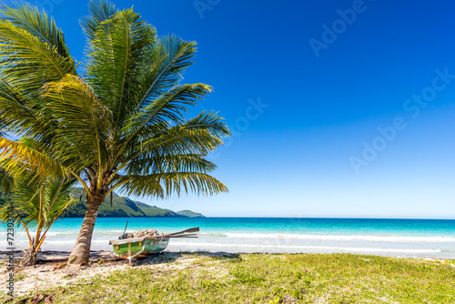 Papiers peints Sauvage Boat, palm tree beautiful tropical beach Playa Rincon