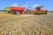 Cleaning grain harvesters