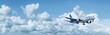 Jet aircraft in flight