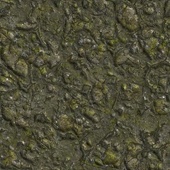 Wizened Swamp Soil with Small Stones.