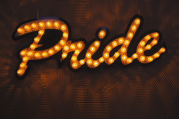 """The word """"Pride""""  printed with light bulb on the wall"""