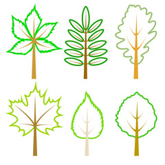 Set of green leaves.