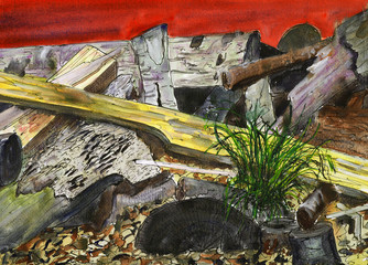 a painting of decaying woodland rubbish