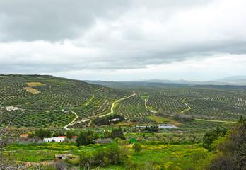 Paisaje desde Úbeda, provincia de Jaén, España