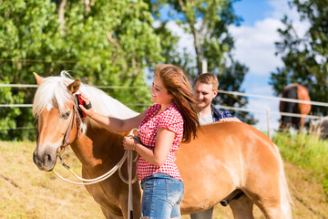 Frau striegelt Pony auf Pferdehof