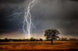 Lightning over field - 72328507