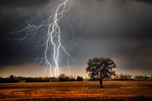 """Постер, картина, фотообои """"Lightning over field"""""""