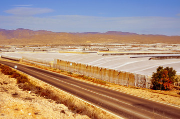 intensive farming in high tunnels in Almeria, Spain
