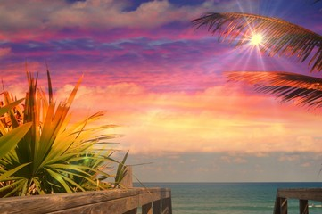 Starlight over the sea