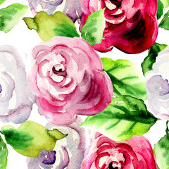 Watercolor illustration of Roses flowers