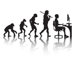 evolution   programmer