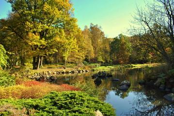Jesień w japońskim ogrodzie
