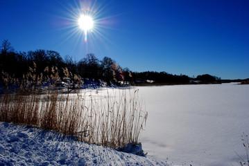 vintern i sjön