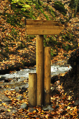 empty wooden arrow sign in forest