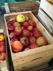 cassa di mele