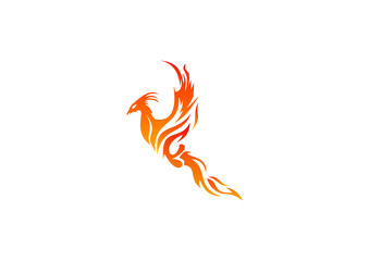 Logo fire business Phoenix  Symbol Energy Power  Icon bird