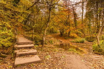 Plessey Woods trail over footbridge