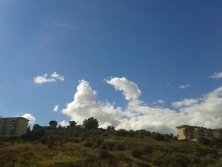 Delfino tra le nuvole