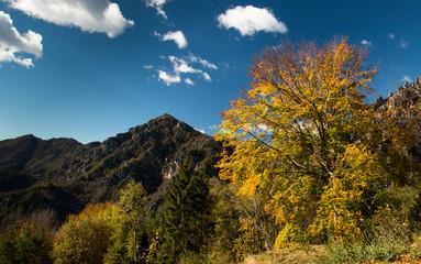Autumn at Tremalzo