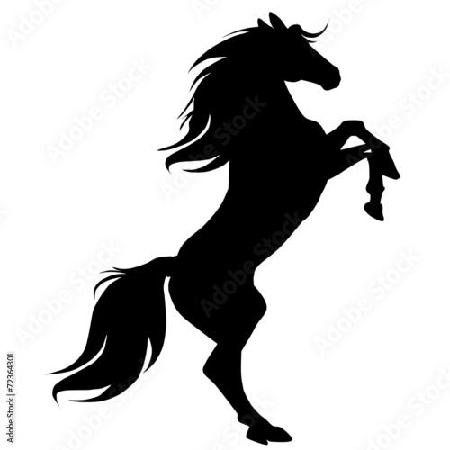 black horse silhouette 16
